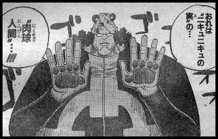 ワンピースのバーソロミュー・くまのニキュニキュの実