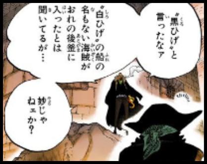 ワンピースのクロコダイルと黒ひげ