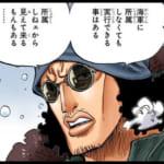 ワンピースのクザン(青キジ)が「黒ひげ海賊団」に加担?