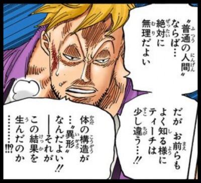 """黒ひげ""""マーシャル・D・ティーチ""""の異形"""